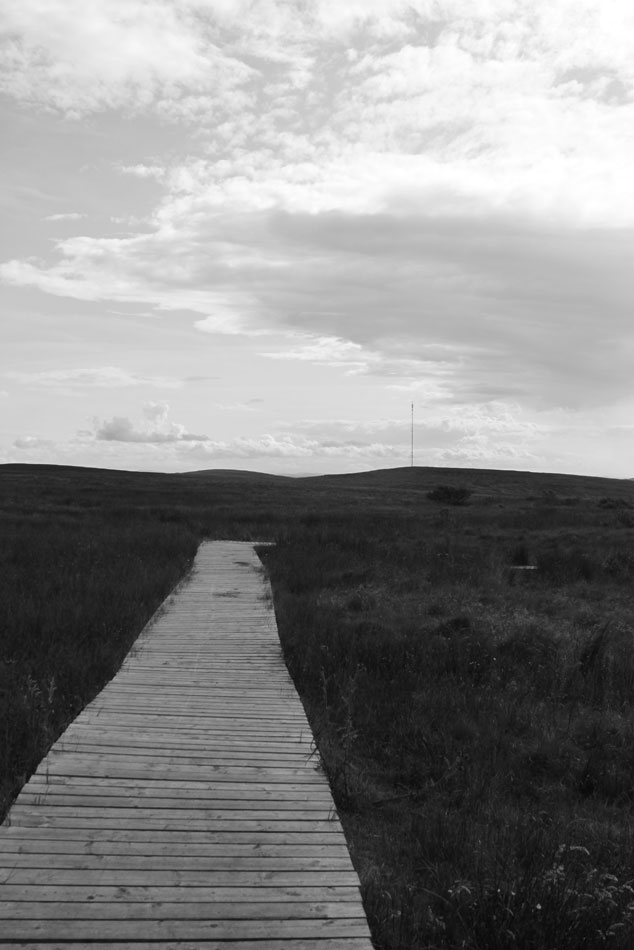 Boardwalk leading to the Black Mountain, Belfast (c) Aptalops